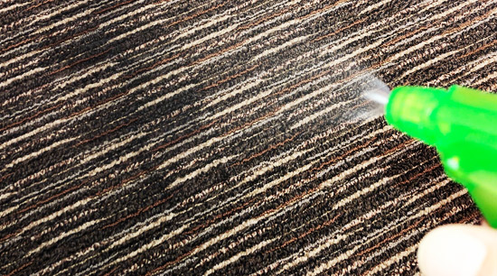 Carpet spray treatment with anti mold solution