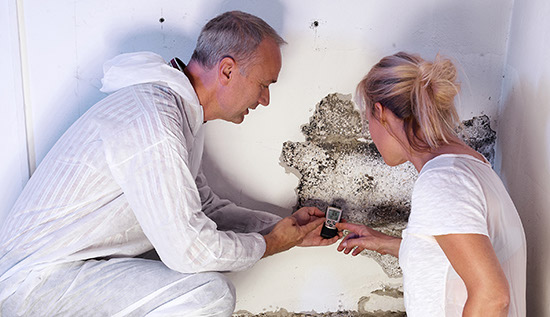 technician performing mold damage treatment and remediation services in Alpharetta Ga