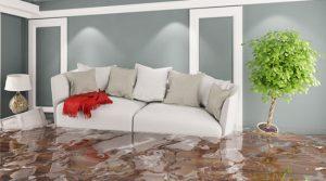 Flooded basement water damage property