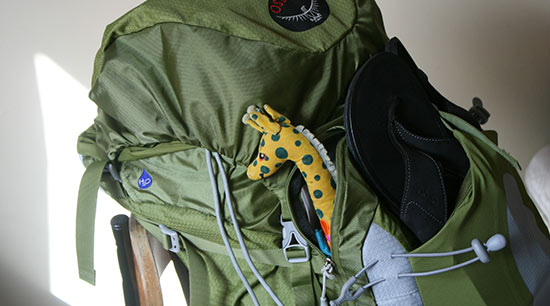 Backpack used as an emergency evacuation kit or a grab and go bag