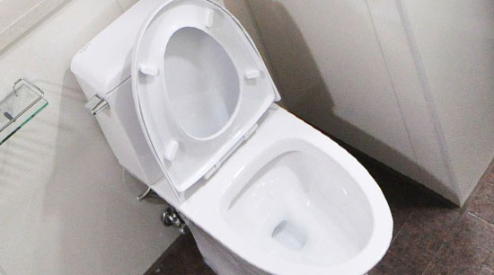 Toilet bowl unclogged and functional
